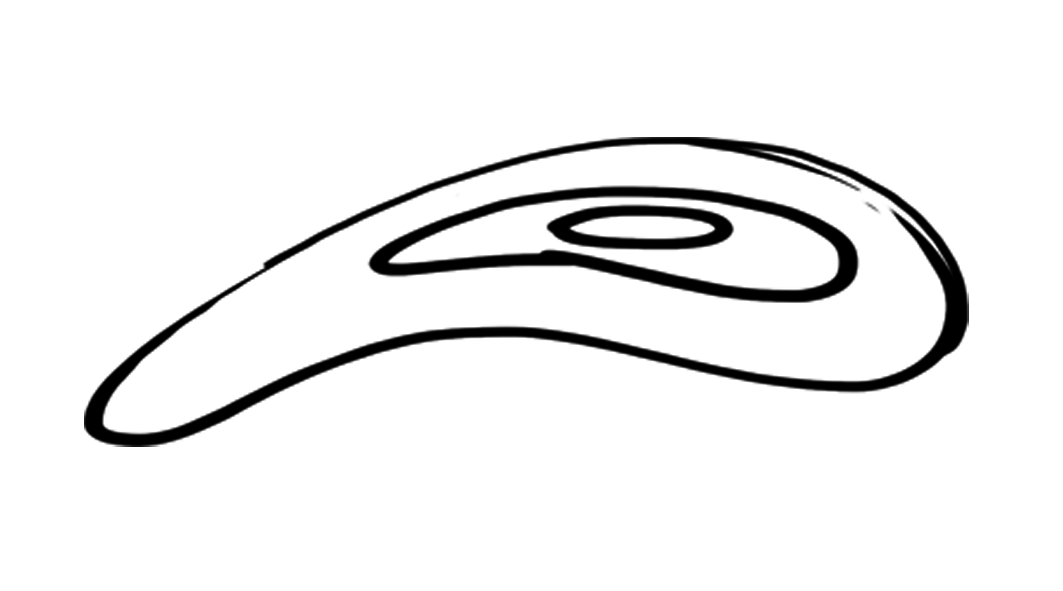 www.stelar.cz